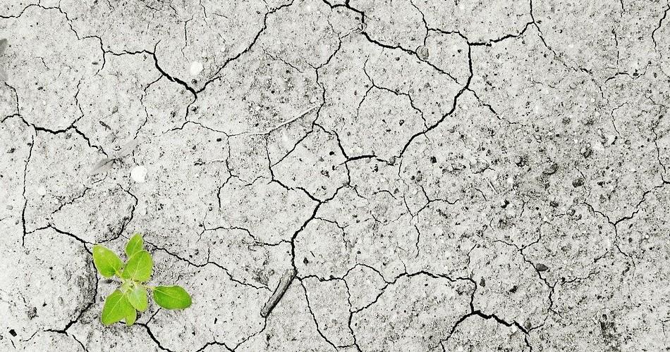 El MITECO presenta las actuaciones de adaptación al cambio climático para hacer frente a las olas de calor en España