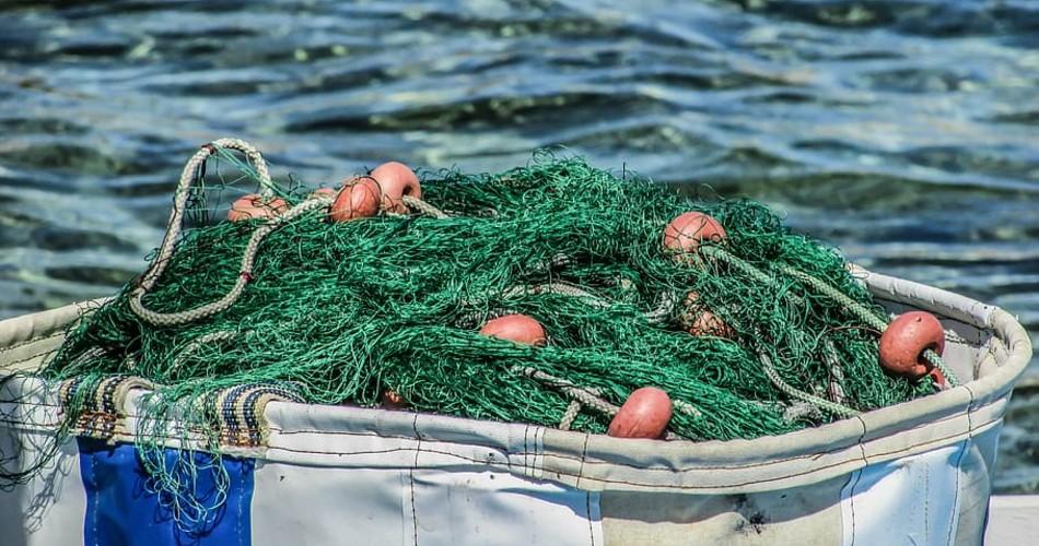 El Gobierno destinará 5,7 millones de euros para impulsar la gestión pesquera sostenible